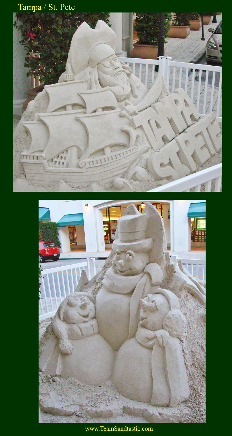 Tampa / St. Pete Sand Sculpting